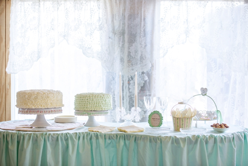Lindsey-Pantaleo-Wedding-Photography-Lake-Ozarks-Missouri-Shawnee-Bluff-Vineyards-Winery (24)
