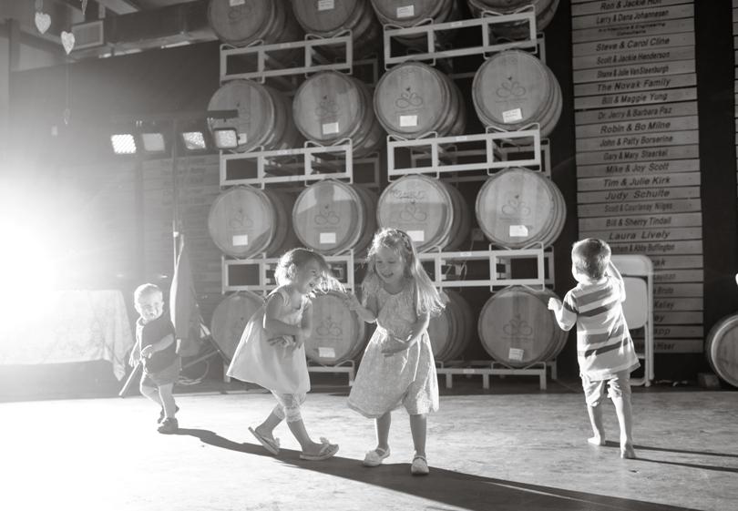 Lindsey-Pantaleo-Wedding-Photography-Lake-Ozarks-Missouri-Shawnee-Bluff-Vineyards-Winery (32)