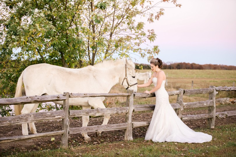 White-Mule-Winery-City-Magazine-Jefferson-City-Missouri-Ana-Maries-Bridal-Busch-Florist (14)