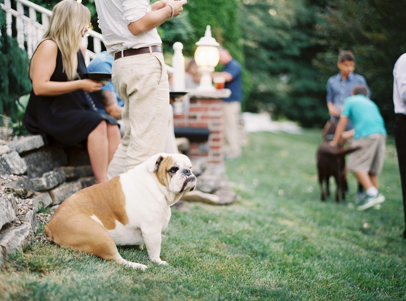 Outdoor-Wedding-Hannibal-Missouri-Lindsey-Pantaleo-Backyard-Wedding (19)